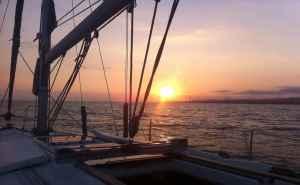 Sun Odyssey 34.2