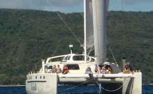 South Sea Vagabond